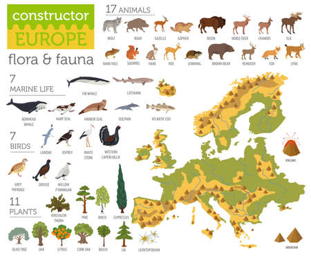 Flat European flora and fauna map constructor elements. Animals, birds and sea life isolated on white big set. Build your own geography infographics collection. Vector illustration Иллюстрация