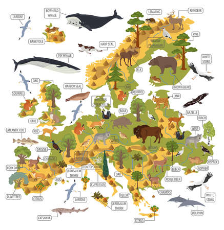 Flat European flora and fauna map constructor elements. Animals, birds and sea life isolated on white big set. Build your own geography infographics collection. Vector illustration Stock Illustratie