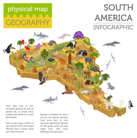 sloth: Isometric 3d South America flora and fauna map elements. Animals, birds and sea life. Build your own geography infographics collection. Vector illustration
