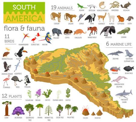 Elementos isométricos do mapa da flora e fauna da América do Sul da América do Sul. Animais, aves e vida marinha. Crie sua própria coleção de infografia geográfica. Ilustração do vetor Ilustración de vector