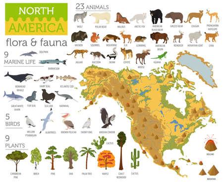 北アメリカ動植物マップ、フラット要素。動物、鳥や海の生活ビッグセット。地理インフォグラフィックスコレクションを構築します。ベクターイ