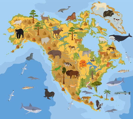 North America flora and fauna map, flat elements. Animals, birds and sea life big set. Build your geography infographics collection. Vector illustration