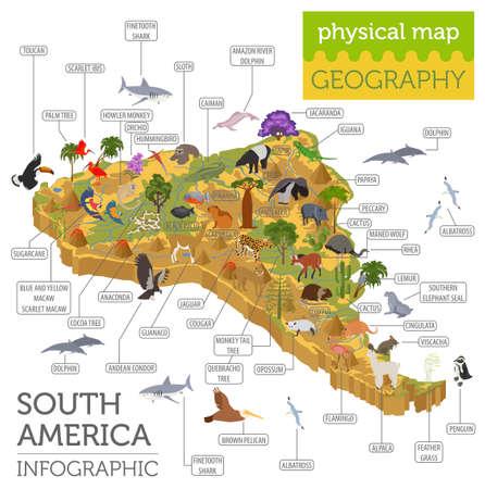 アイソメ3d 南アメリカ動植物マップ要素。動物、鳥や海の生命。独自の地理インフォグラフィックスコレクションを構築します。ベクターイラスト