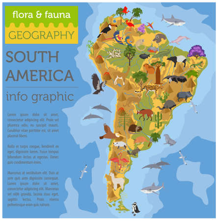 South America Flora And Fauna Map Flat Elements Animals Birds - Big map of us poster