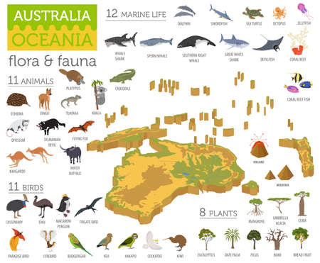 Isometric 3d Australia And Oceania Flora And Fauna Map Elements ...