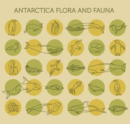 Flat Antarctica flora and fauna  elements. Animals, birds and sea life simple line icon set. Vector illustration Illustration
