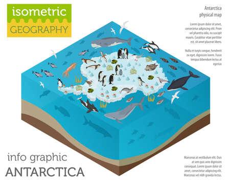 Elementos isométricos do mapa da flora e fauna da Antártida 3d. Animais, aves e vida marinha. Crie sua própria coleção de infografia geográfica. Ilustração do vetor