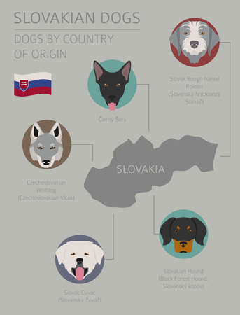 Dogs by country of origin. Slovakian dog breeds. Infographic template. Vector illustration Иллюстрация