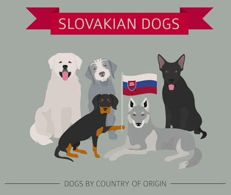 Dogs by country of origin. Slovakian dog breeds. Infographic template. Vector illustration Ilustração