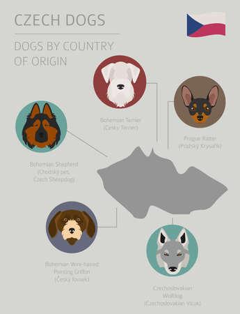 Dogs by country of origin. Czech dog breeds. Infographic template. Vector illustration Ilustração