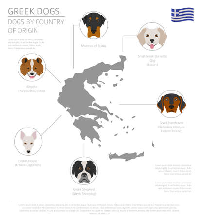 Dogs by country of origin. Greek dog breeds. Infographic template. Vector illustration