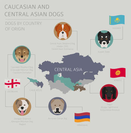 Dogs by country of origin. Caucasian and Central Asian dog breeds. Infographic template. Vector illustration
