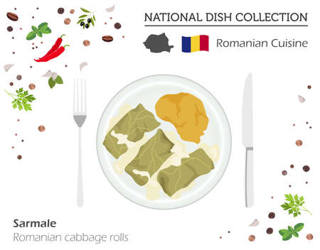 Romanian cuisine, European national dish collection. Cabbage rolls isolated on white, infographic vector illustration.
