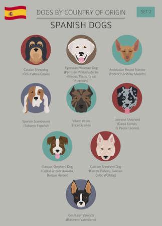 Perros por país de origen, razas de perros españoles. Ilustración de vector de plantilla de infografía.