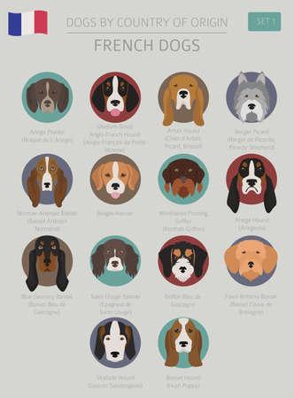 Dogs by country of origin Vector illustration Archivio Fotografico - 98873500