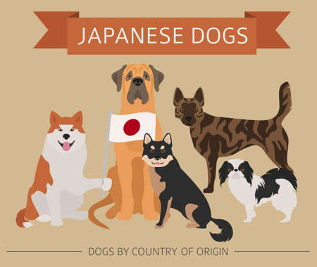 Dogs by country of origin. Japanese dog breeds. Infographic template. Vector illustration 写真素材 - 101097015