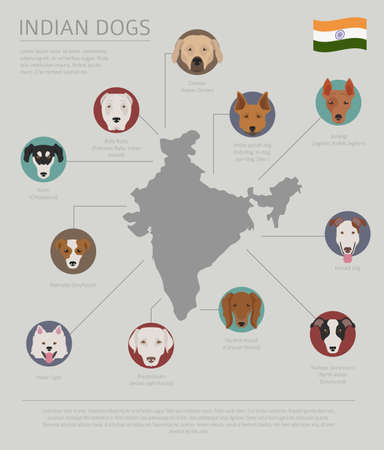 Dogs by country of origin. Indian dog breeds. Infographic template. Vector illustration