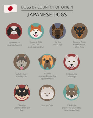 Dogs by country of origin. Japanese dog breeds. Infographic template. Vector illustration Illustration