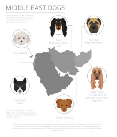 Dogs by country of origin. Near East dog breeds, persian dogs. Infographic template. Vector illustration