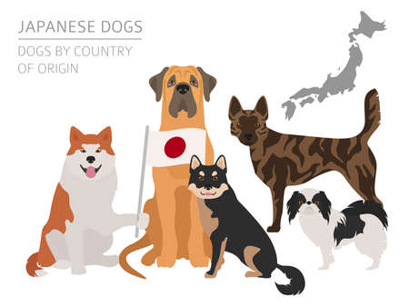 Dogs by country of origin. Japanese dog breeds. Infographic template. Vector illustration  イラスト・ベクター素材