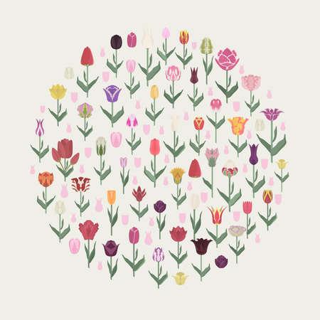 Tulip varieties flat icon set. Garden flower and house plants infographic. Vector illustration Illustration