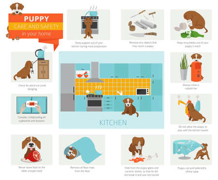 Puppy care and safety in your home. Kitchen. Pet dog training infographic design. Vector illustration