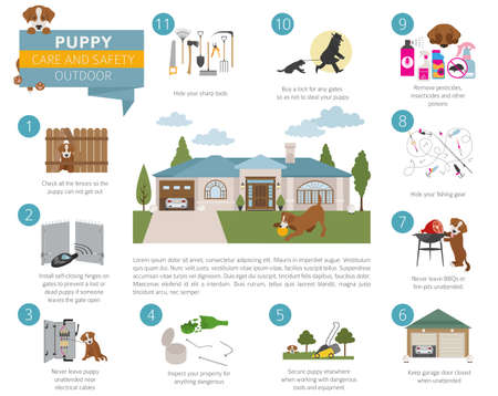 Puppy care and safety in your home. Outdoor. Pet dog training infographic design. Vector illustration
