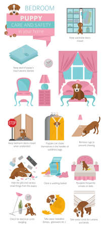 Puppy care and safety in your home. Bedroom. Pet dog training infographic design. Vector illustration