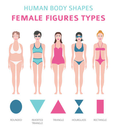 Human body shapes. Female figures types set. Vector illustration