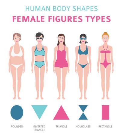 Kształty ludzkiego ciała. Zestaw typów postaci kobiecych. Ilustracja wektorowa