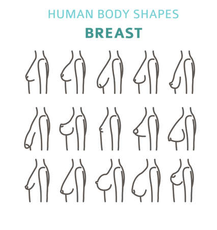 Human body shapes. woman breast form set. Vector illustration