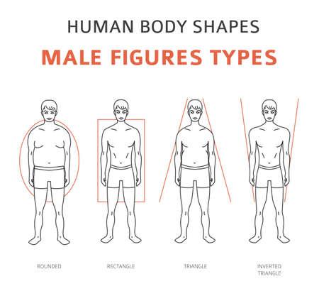 Forme del corpo umano. Set di tipi di figure maschili. Illustrazione vettoriale Vettoriali