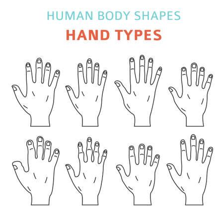 Formes du corps humain. Jeu d'icônes de types de main. Illustration vectorielle