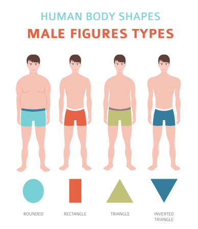 Human body shapes. Male figures types set. Vector illustration  イラスト・ベクター素材