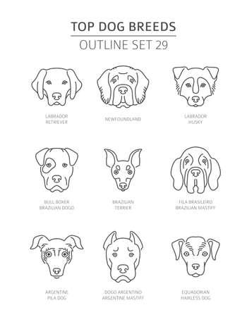 Les meilleures races de chiens. Collection de contours pour animaux de compagnie. Illustration vectorielle