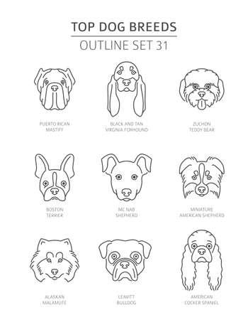 Razas de perros superiores. Colección de contorno de mascotas. Ilustración vectorial Ilustración de vector