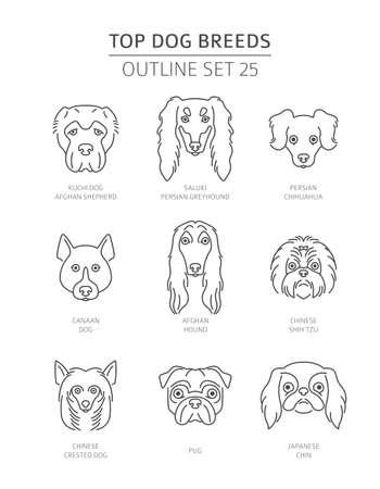 Razas de perros superiores. Colección de contorno de mascotas. Ilustración vectorial