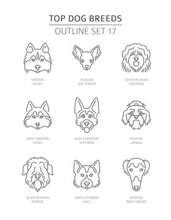 Top dog breeds. Pet outline collection. Vector illustration Stock Vector - 128503110