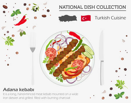 Turkish Cuisine. Middle East national dish collection.  Adana kebabi isolated on white, infograpic. Vector illustration
