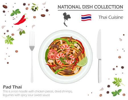 Thai Cuisine. Asian national dish collection. Pad thai  isolated on white, infograpic. Vector illustration