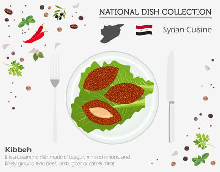 Syrian Cuisine. Middle East national dish collection. Kibbeh isolated on white, infograpic. Vector illustration