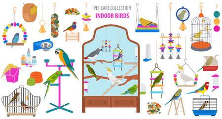 Jeu d'icônes d'appareil pour animaux de compagnie style plat isolé sur blanc. Collection de soins aux oiseaux. Créez votre propre infographie sur le perroquet, la perruche, le canari, le muguet, le pinson, le geai, l'étourneau, l'amadina, le tarin, le toucan, le bruant. Illustration vectorielle