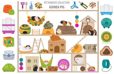 Pet rodents home accessories icon set flat style isolated on white. Care collection. Create own infographic about guinea pig, rat, hamster, chinchilla, mouse, rabbit. Vector illustration