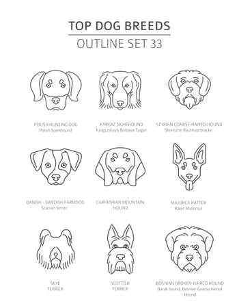 Top dog breeds. Hunting dogs set. Pet outline collection. Vector illustration