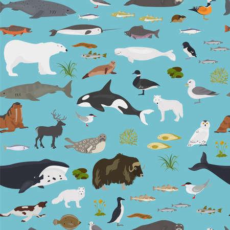Ice sheet and polar desert biome. Terrestrial ecosystem world map. Arctic animals, birds, fish and plants seamless pattern design. Vector illustration