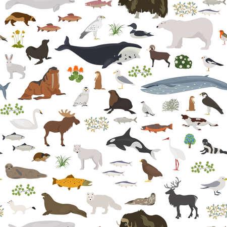 Tundra biome. Terrestrial ecosystem world map. Arctic animals, birds, fish and plants seamless pattern design. Vector illustration