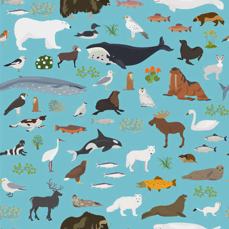 Tundra biome. Terrestrial ecosystem world map. Arctic animals, birds, fish and plants seamless pattern design. Vector illustration