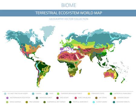 Mappa del mondo dell'ecosistema terrestre. Bioma. Progettazione infografica della zona climatica mondiale. Illustrazione vettoriale
