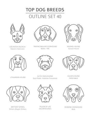 Top dog breeds. Hunting dogs set. Pet outline collection. Vector illustration Vector Illustration