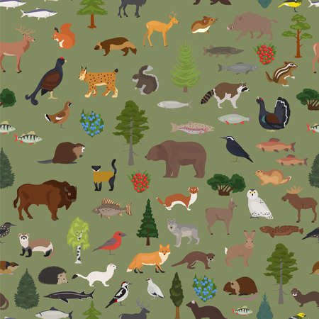 Taiga biome, boreal snow forest seamless pattern. Terrestrial ecosystem world map. Animals, birds, fish and plants design. Vector illustration